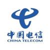 中国电信(800010000)